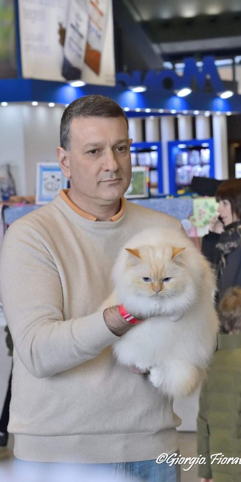 Expo felina di Genova